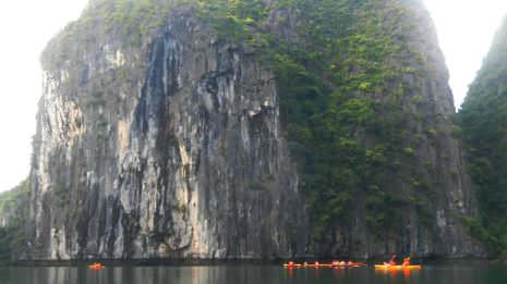 Felsen im Ha Long Bay