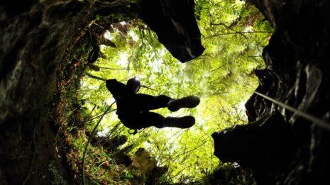 Glühwürmchen Höhle