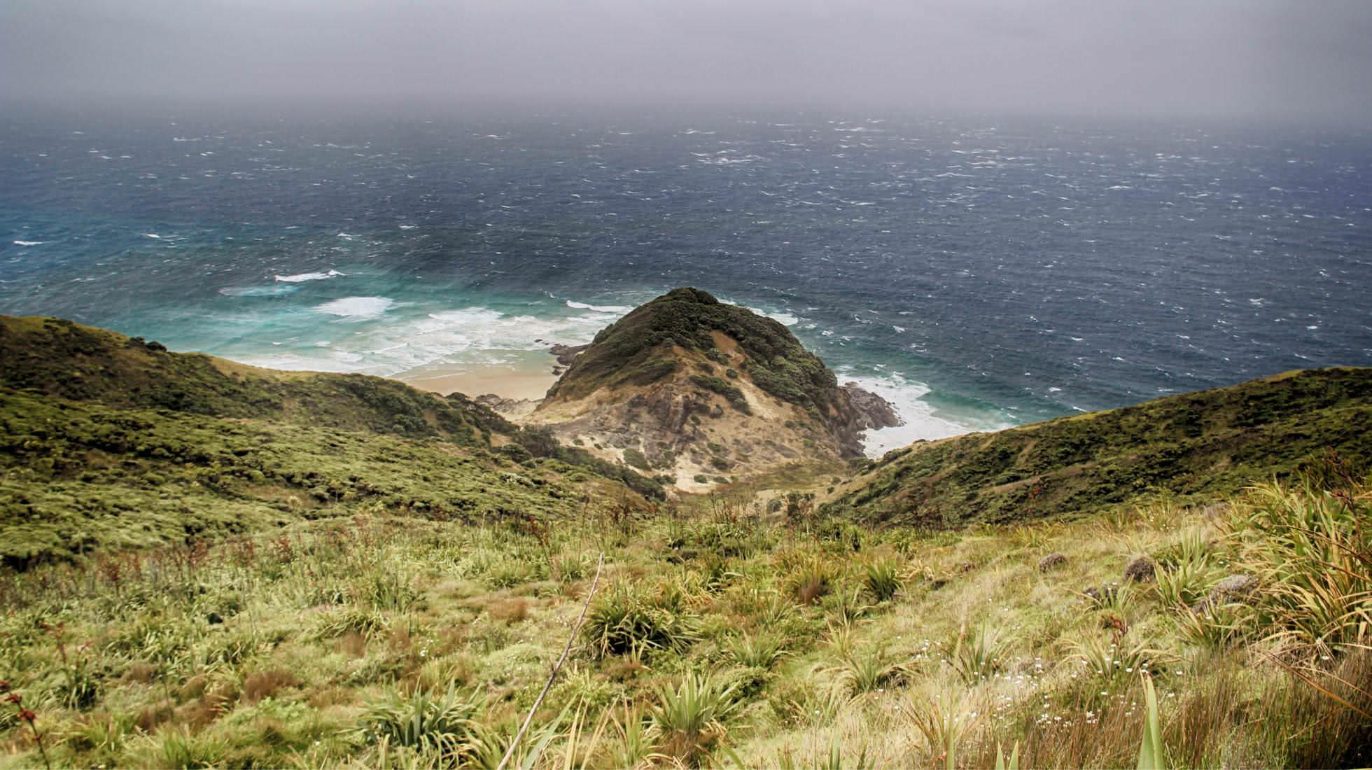 Einsamkeit auf Cape Reinga