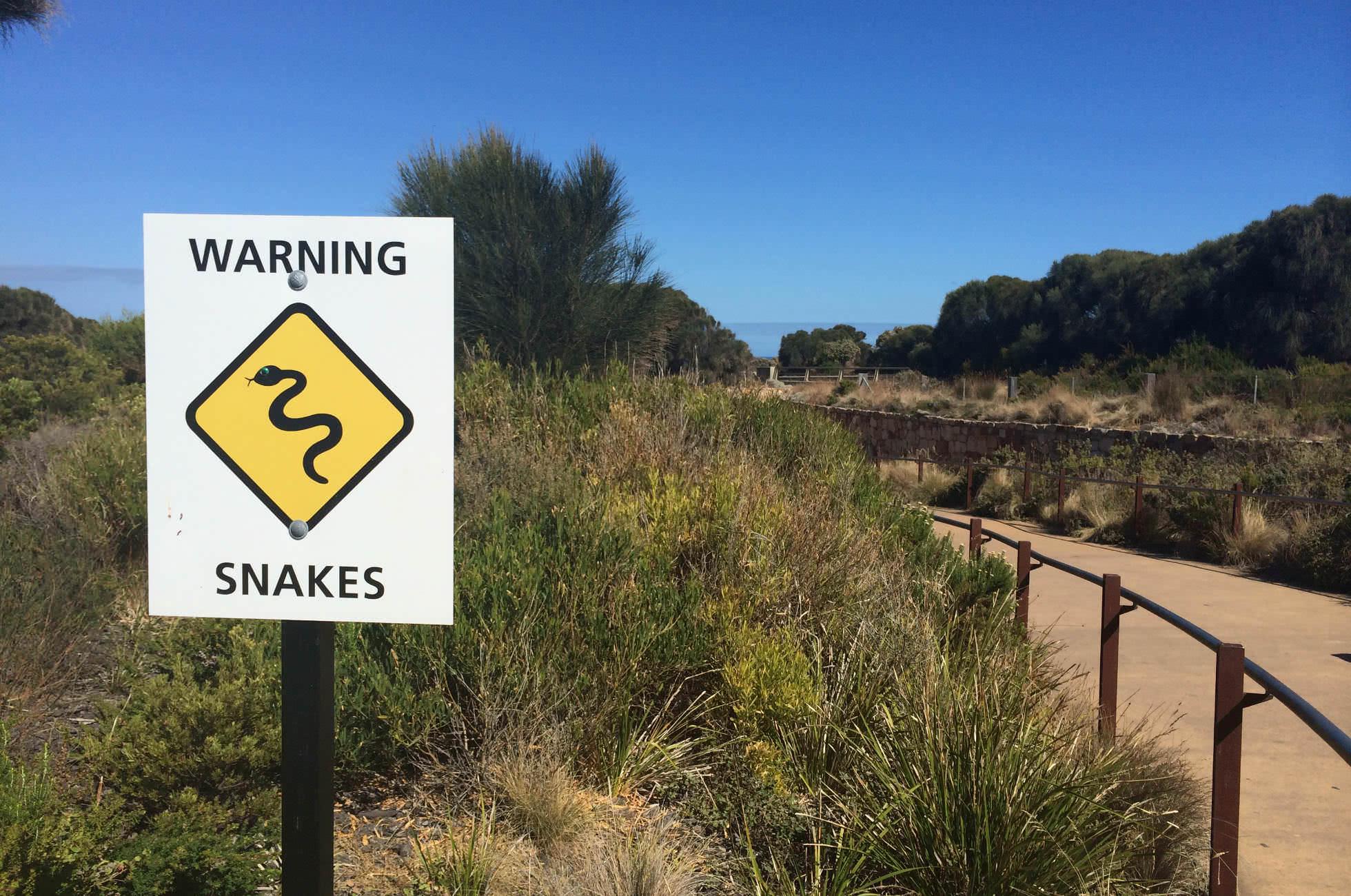 Australien Schlangen Schild