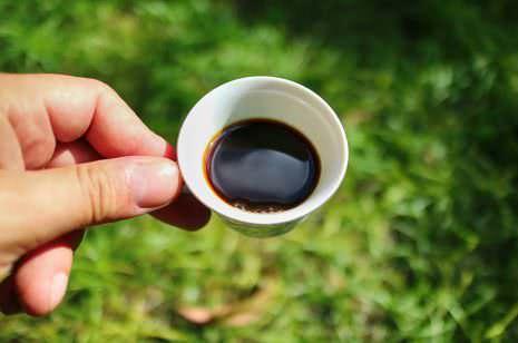 Kaffeetasting