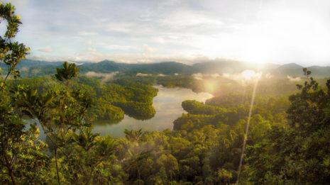 Taman Negara, das grüne Herz Malaysias