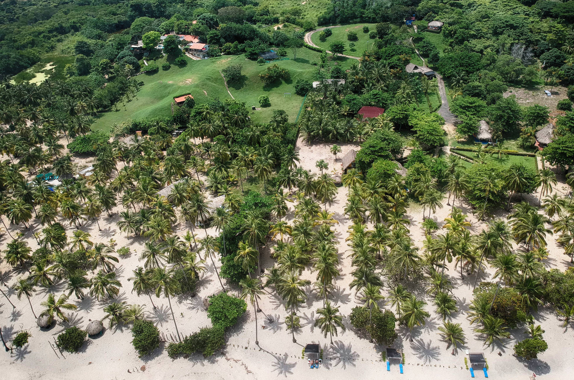 Palomino Playa Mandala