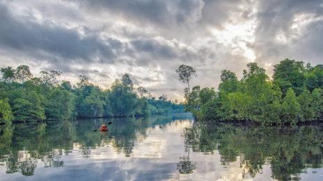 Bocas del Toro: Ein Inselparadies der anderen Art