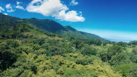 Boquete: Am Fuße des Vulkan Barú