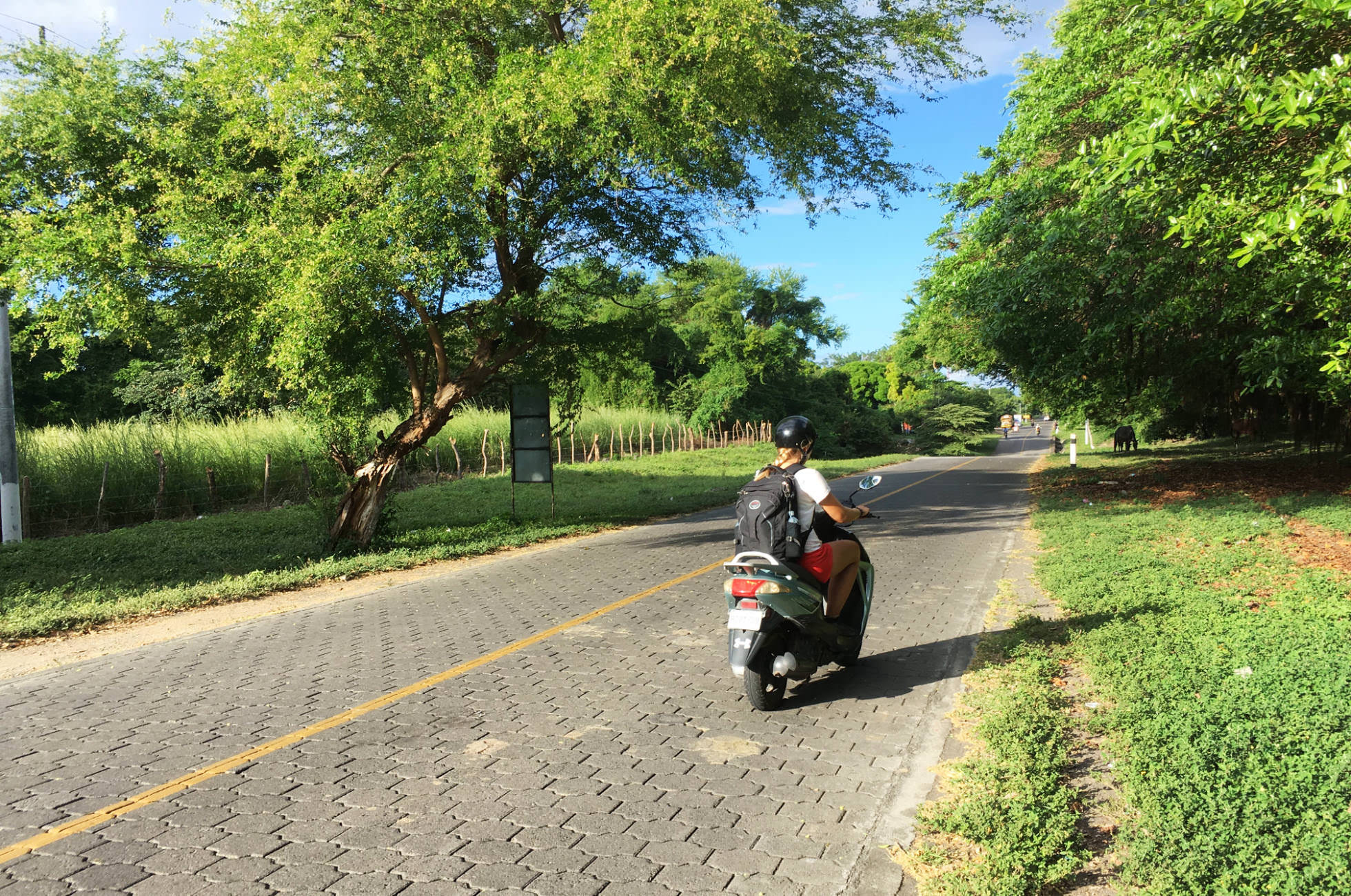 Roller Scooter Ometepe