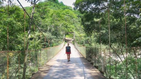 Monteverde: Zwischen den Wolken