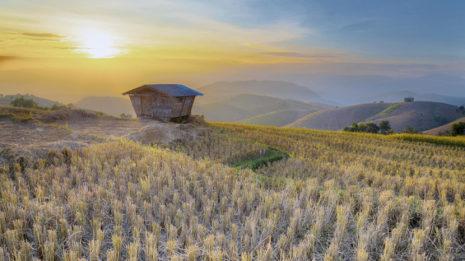 7 Gründe warum wir Nordthailand lieben!