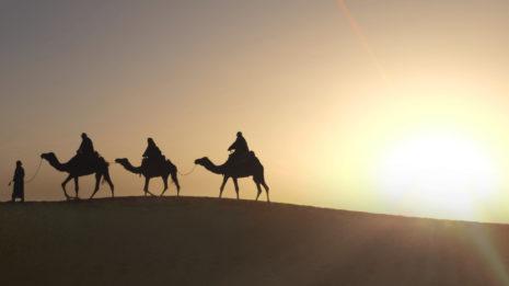 Die Wüste Indiens: Von Kamelen und dem Holi-Festival