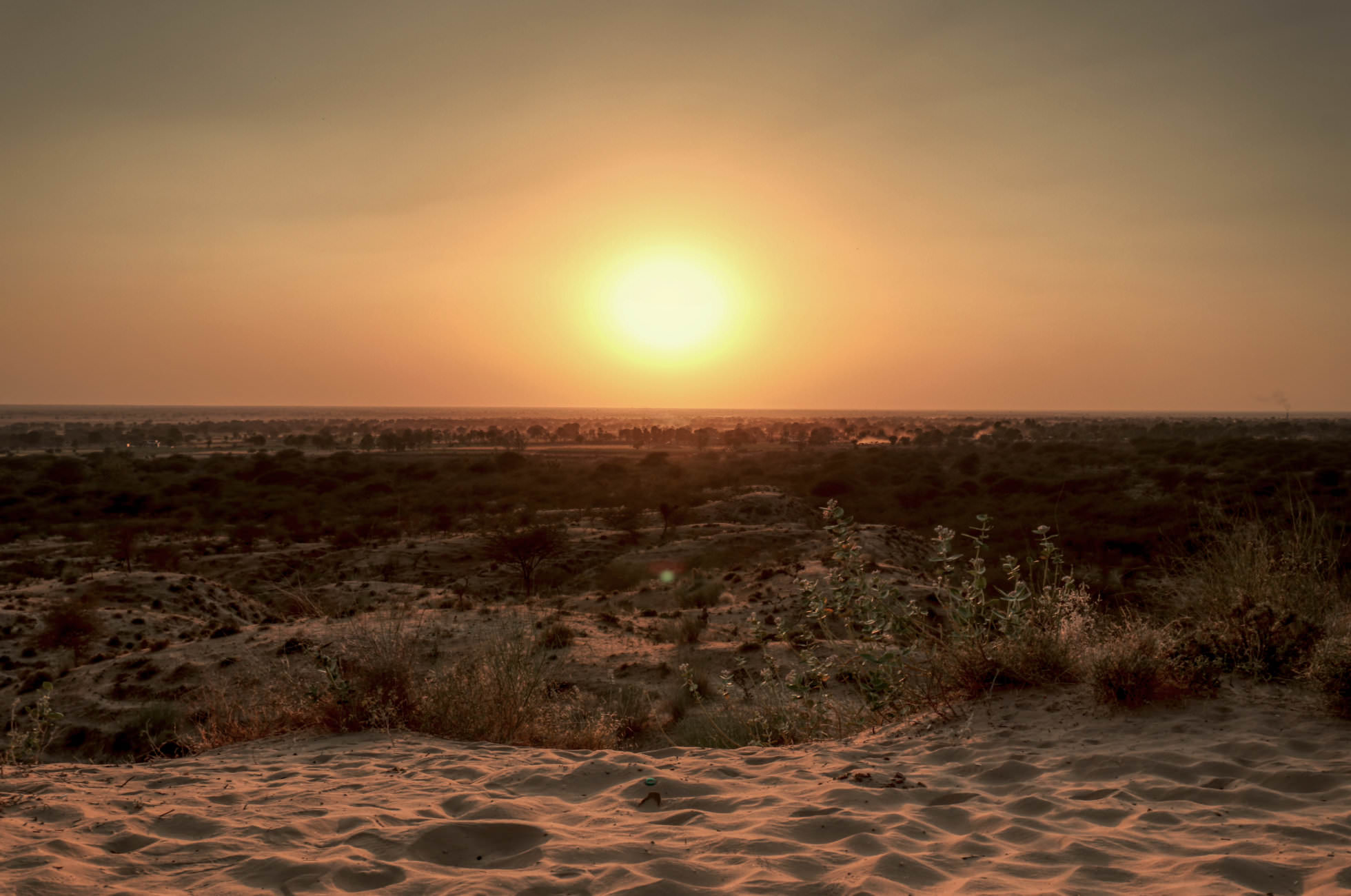 Sonnenuntergang Thar Wüste
